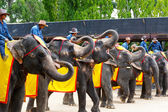 The world famous elephant show impressive in Nong Nooch tropical garden on April 23, 2014 in Pattaya, Thailand — Stock Photo