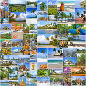 Collage of travel images from Thailand (my photos). Buddhist temples, exotic islands, tropical beaches with white sand and palm trees and a traditional Thai cuisine. Nature and travel background — Stok fotoğraf