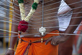 Thaipusam Festival — Stock Photo