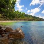 爱妮岛 — 图库照片