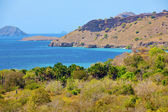 Komodo Island — Stock Photo