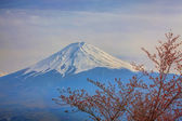 Mt Fuji — Stock Photo