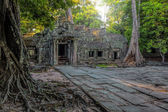 Sunrise over Ta Phrom — Foto de Stock