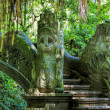 Ubud Monkey Forest — Stock Photo #49528001