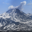 Active Avacha volcano - Stock Photo