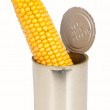 Corn on the cob in a can - Stock Photo