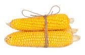 Ear of corn with rope — Foto Stock
