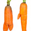 Ripe carrots — Stock Photo