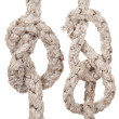 Ropes with knot - Stock Photo