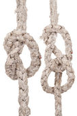 Ropes with knot — Stock Photo