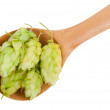 Hops in a wooden spoon — Stock Photo