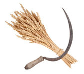 Sheaf of wheat and sickle — Stock Photo
