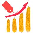 Increase in the price of corn — Stock Photo
