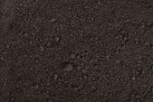 Black soil texture — Stock Photo