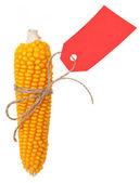 Madura espiga de milho com um tag de preço vermelho — Foto Stock