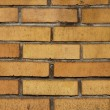 Old yellow brick wall background — Stock Photo
