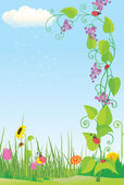 Flower meadow with ladybugs — Stock Vector