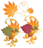 Autumn leaves - design elements — Stock vektor