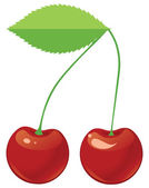 Two red ripe cherries on a shank — Vector de stock