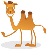 Cartoon camel — Stock Vector