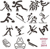 Winter sport icons — Stock Vector