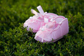 Pair of pink balerina shoe — Photo