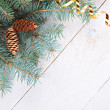 Stock Photo: Fir branch with cones