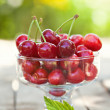 Cherry fuits outdoor — Stock Photo