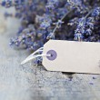 Dried lavender — Stock Photo #28735871
