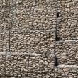 Protective gabion wall — Photo