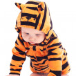 Six month baby wearing tiger suit — Stock Photo #30532279