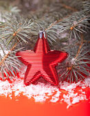 Christmas red star on wooden background  — Foto de Stock