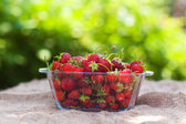 Strawberries outdoor on wooden background — Stock Photo