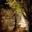 Bench, tree and old stone wall — Stock Photo