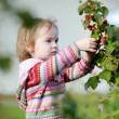 Adorable toddler girl picking raspberries — Stock Photo #13724870