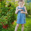 Adorable little girl with red currants — Stock Photo