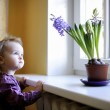 Adorable toddler by the window with the flowers — Stock Photo #13724985