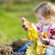 Adorable toddler girl outdoors — Stock Photo