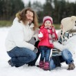 Happy family on a winter day — Stock Photo