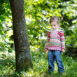 Adorable toddler in autumn park — Stock Photo #13725338