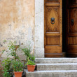 Old wooden door with flowers — Stock Photo