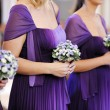 Row of bridesmaids — Stock Photo