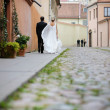 Stock Photo: Bride and groom walking away