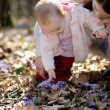 Little girl touching hepatica flowers — Stock Photo