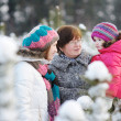 Stock Photo: Family at winter day