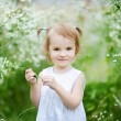 Adorable toddler girl in a meadow — Stock Photo