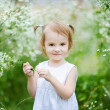 Adorable toddler girl in a meadow — Stock fotografie