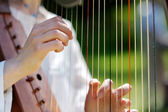 Closeup of a Woman playing a Harp — Stock Photo