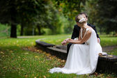 Bride and groom are sitting in autumn park — Stok fotoğraf