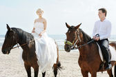 Bride and groom on a horses by the sea — Stock Photo